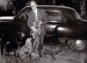 Picture of car and the family dogs